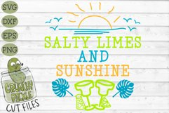 Salty Limes and Sunshine Summer Beach SVG Product Image 2
