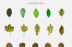 Autumn Scene Creator #01 Product Image 3
