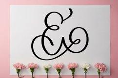 Web Font Monogram Letters Font - Swoosh-y Beautiful Hand Let Product Image 3