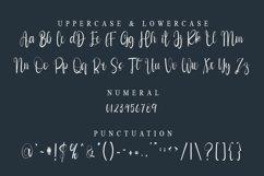 Style Signature - Modern Signature Font Web Font Product Image 2