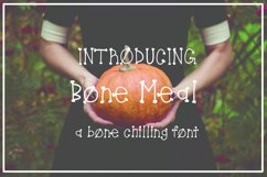Bone Meal Font Product Image 1