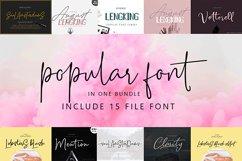 Popular Font Bundles Product Image 1