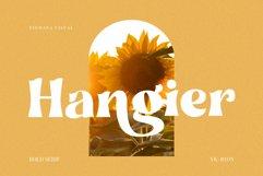 Hangier - Vintage Bold Serif Product Image 1