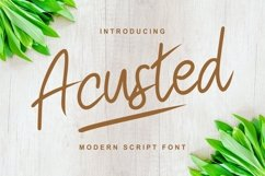 Acusted | Modern Script Font Product Image 1