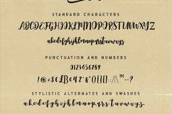 Squishy Script Font Product Image 6