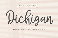 Dichigan Product Image 1