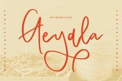 Geyala - Brush Script Font Product Image 1