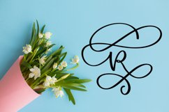 Swirly Letters - Monogram Font Product Image 3