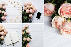 Gentle Roses Stock Photos Pack Product Image 2