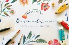 Brandine Product Image 1