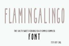 FLAMINGALINGO Font from Shorts and Lemons Product Image 1