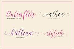 Gladius Script Product Image 4