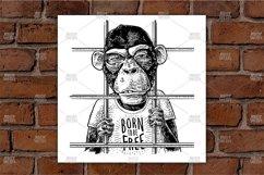 Arrested Monkey dressed in t-shirt Vintage black engraving Product Image 1