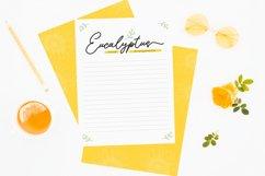Sunflower   Freehand Signature Font Product Image 3