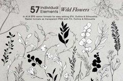 WILD FLOWERS Illustration Botanical Product Image 3