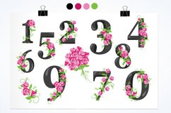 Floral Numbers graphics and illustrations Product Image 2
