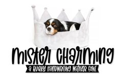 Mister Charming - A Quirky Marker Font! Product Image 1