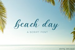 Beach DayScript Font Product Image 1