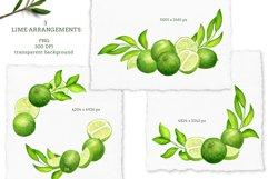 Watercolor Lime Arrangements clip art set Product Image 2