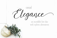 Casual Elegance Font duo extra ligatures & alternatives Product Image 2