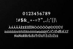 Ireene Serif 3 Font Family Pack Product Image 3