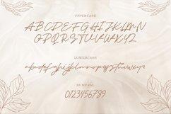 Senja - Monoline Handwritten Script Product Image 6