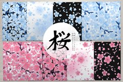 Vector cherry blossom collection Product Image 4