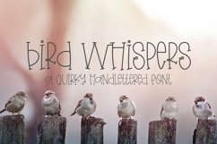 Web Font Bird Whispers - A Quirky Handlettered Font Product Image 1