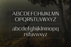 Web Font Celosia Product Image 5