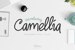 Camellia Handwritten Font Product Image 1