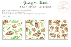 Ginger Root Clipart Collection. Watercolor Ginger Spice Product Image 4