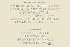 Oakland - Decorative Display Serif Product Image 6