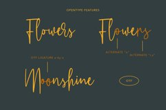 Whillys Script Font Product Image 2