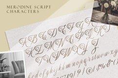 Merodine Script Product Image 7