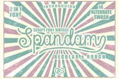 Spandam Vintage Font Product Image 1
