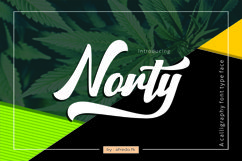 Norty Product Image 1