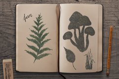 Mushrooms set Product Image 6