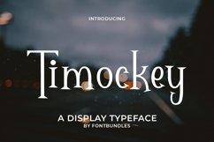 Web Font Timockey Product Image 1