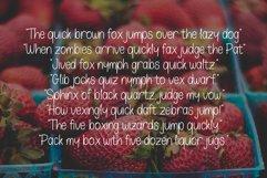 Oskosh Handwritten Font Product Image 5