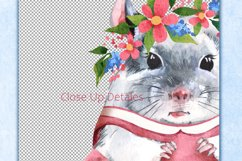 Chinchillas, 4 png animals. Watercolor clip art Product Image 3