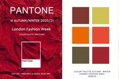 Swatches for photoshop, Pantone Color Autumn Winter 2020-21 Product Image 2