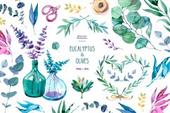 Watercolor eucalyptus and olive Product Image 1
