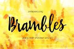 Brambles Font Duo Product Image 1