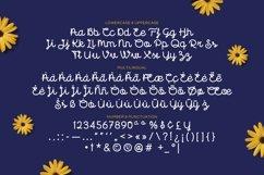 Florida - Cute Script Font Product Image 4