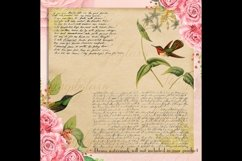 16 Antique Humming Birds Trochilidae Nature Digital Papers Product Image 2