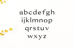 Erynn Serif Font Product Image 3