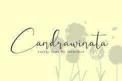 Candrawinata Product Image 1