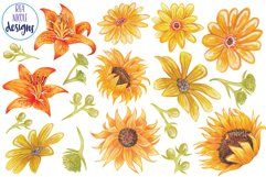 Summer Sunshine Blooms clipart Product Image 2