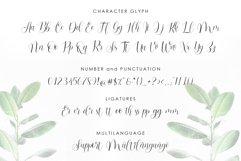 Barbara Blast || Beautiful Script Font Product Image 2