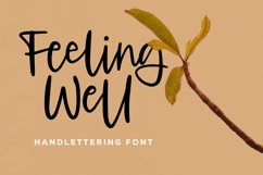 Feeling Well - Handlettering Font Product Image 1